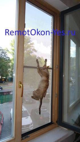 сетка на окно для кошек, антикошка на пластиковые окна купить
